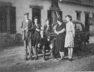 Les Barnabés, famille Elise
